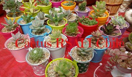 Cactus RSAFI 1