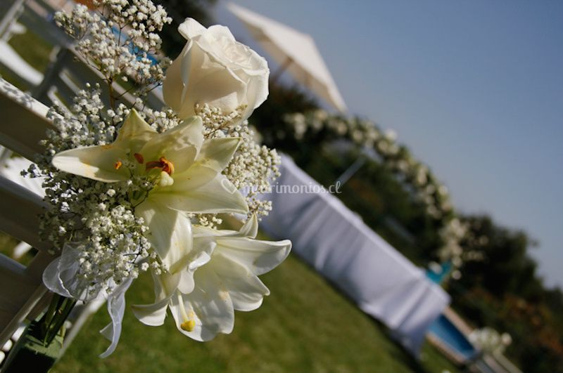 Rodrigo Arredondo Wedding Planner