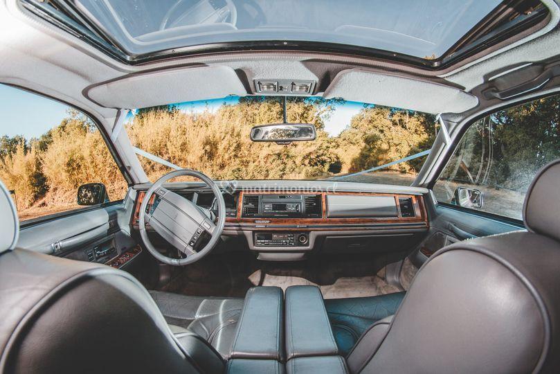Interior dle auto