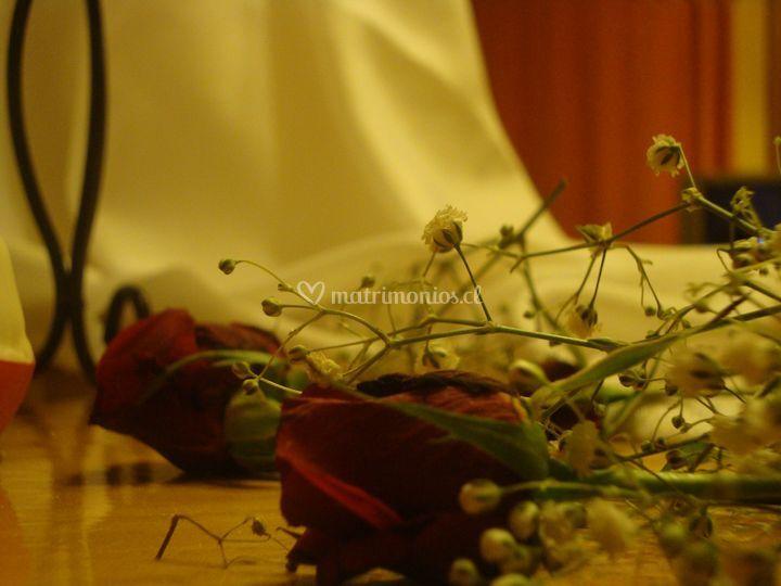 Flores naturales en decoracion