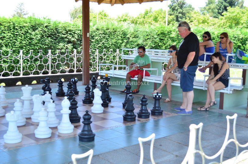 Otra gran partida de ajedrez