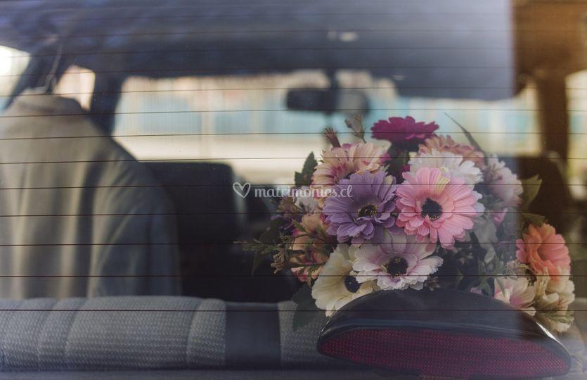 Arreglos auto novia