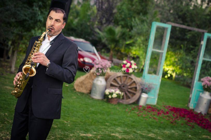 Saxo boda