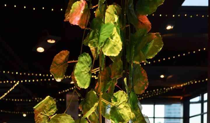 Aérea guirnaldas hojas