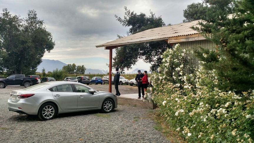 Boda en Nogales - Machalí