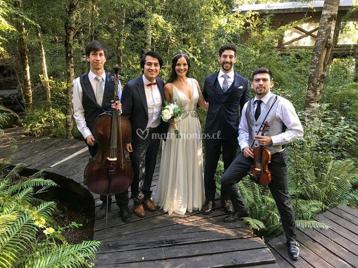 Huilo Huilo - Matrimonio 2019