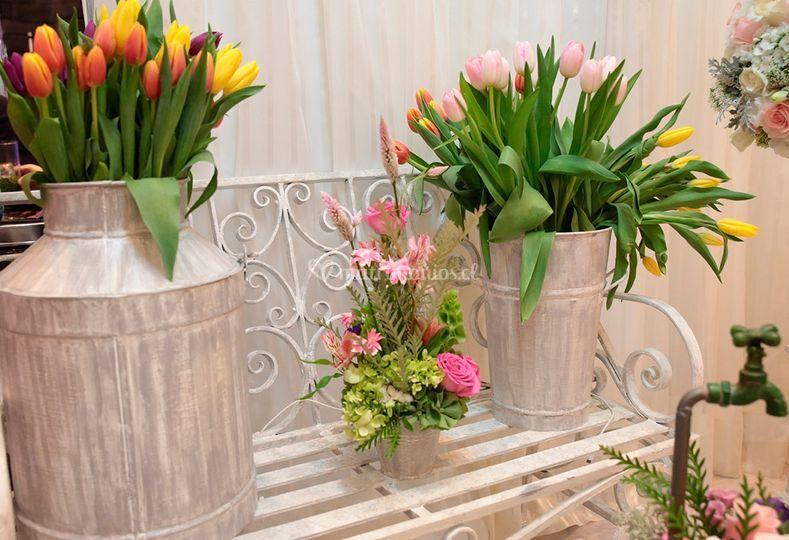 Flores y macetas rose