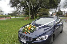 Torres Auto