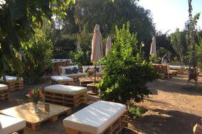 Lounge Pallets