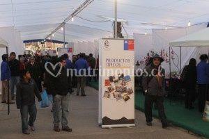 Expo Quintero 2012