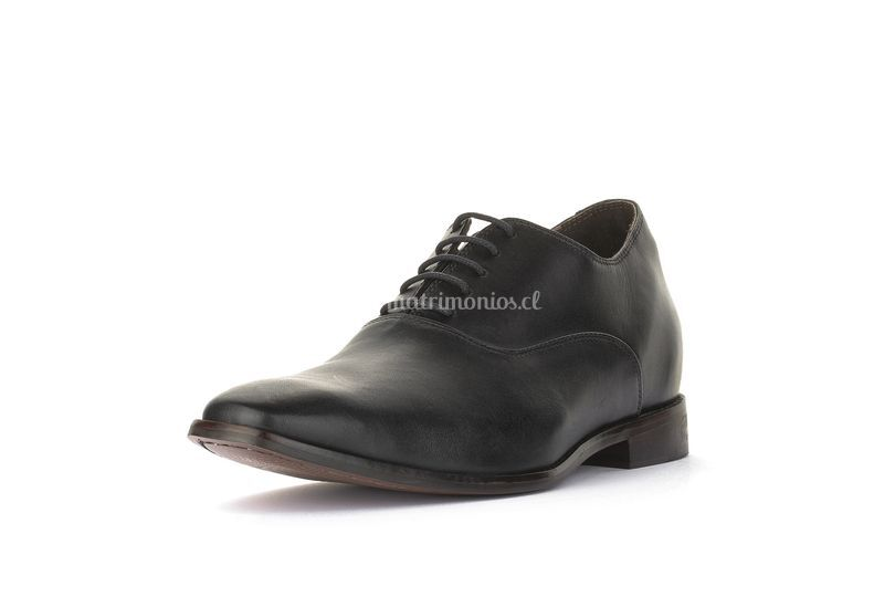 Zapato Manager +7cms Brown Max Dengri 5AC9GVW