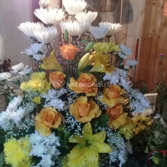 Rosas, lilium