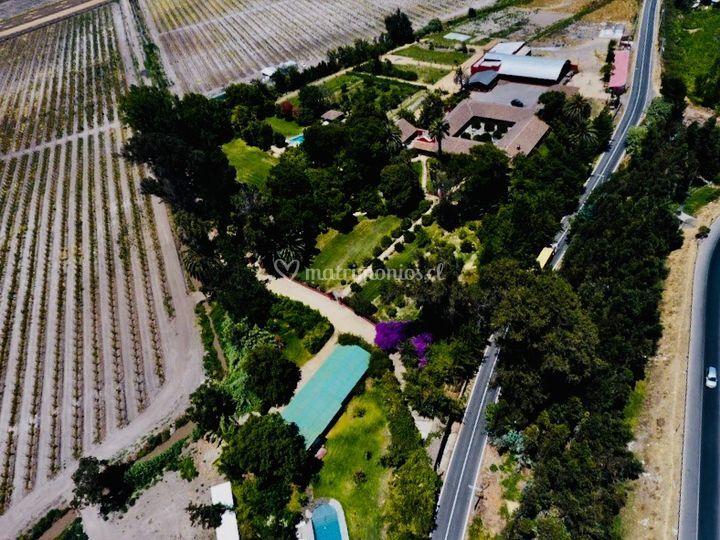 4 hectáreas de CLA 2019