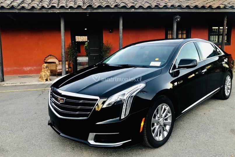 Cat. C Cadillac XTS- L