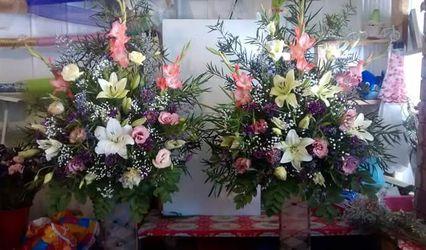 Florería Rafaella