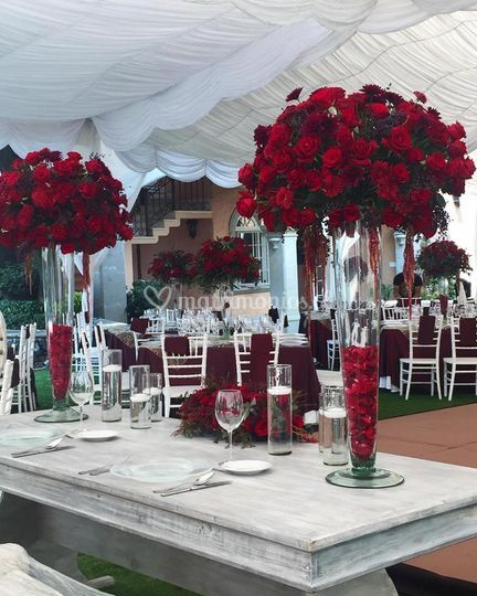 Celebración matrimonio en tpdv
