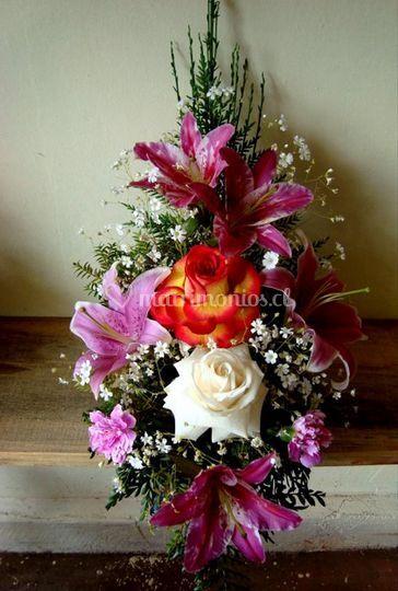 Diversidad en tipos de flores