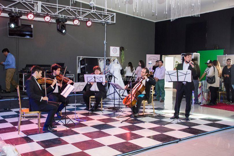 Cuarteto de cuerdas y cantante
