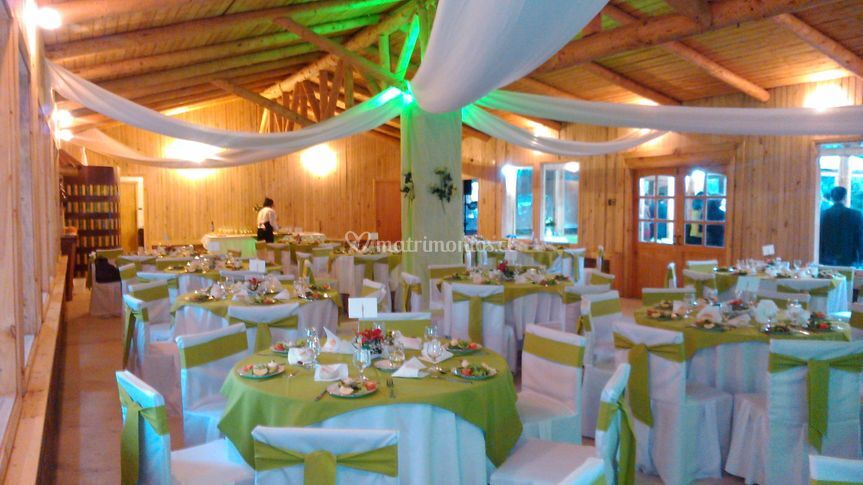 Salón vestido en color verde
