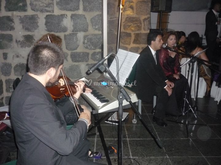 Músicos para Eventos