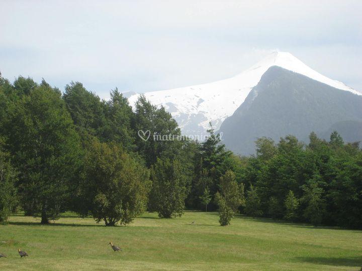 Driving golf con montaña