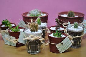 Regala Cactus