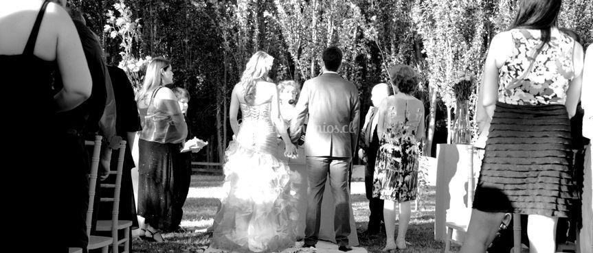 Matrimonio en áreas verdes