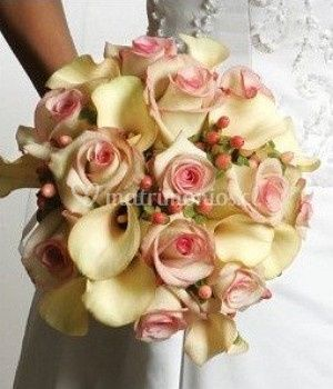 Rosas color pastel