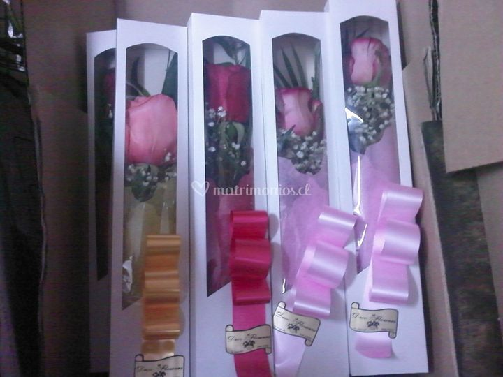Cajas con rosas