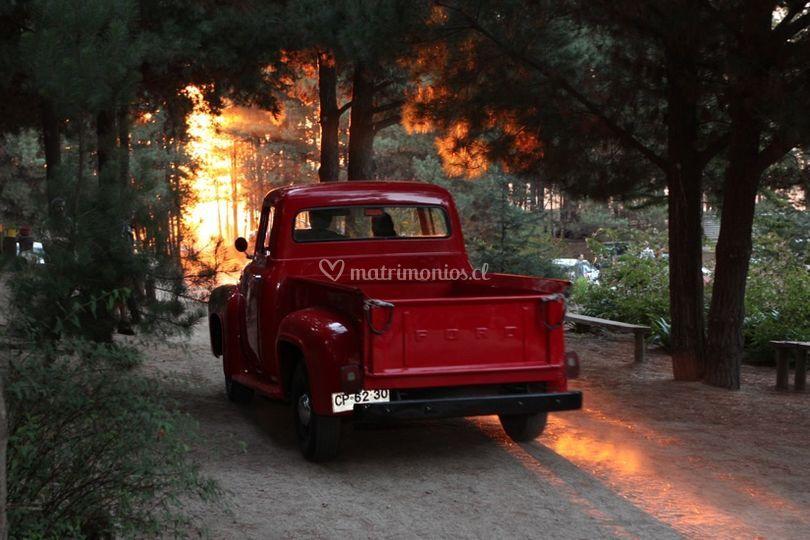 Camioneta Ford 56