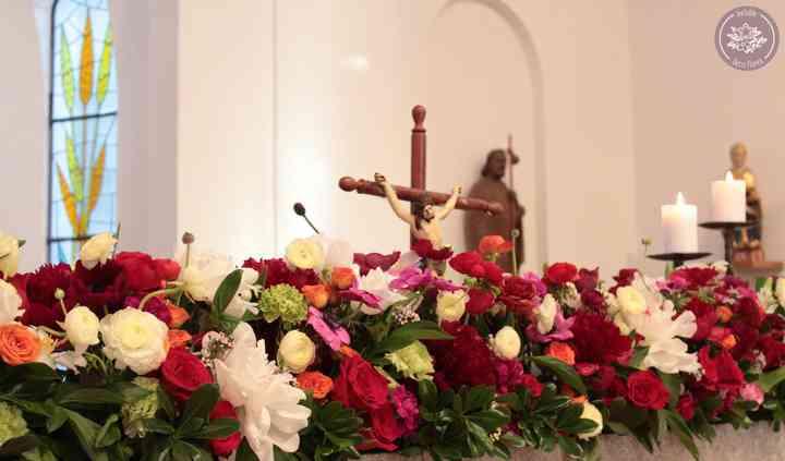 Flores Francisca Pérez