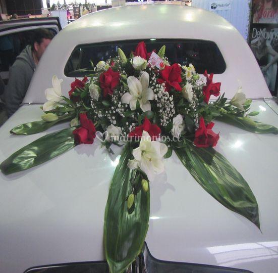 Diseños para el auto