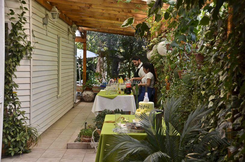 Bar y jardines