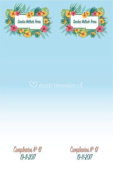 Concepto Hawaiano