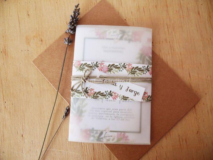 Opalina y papel vegetal alma