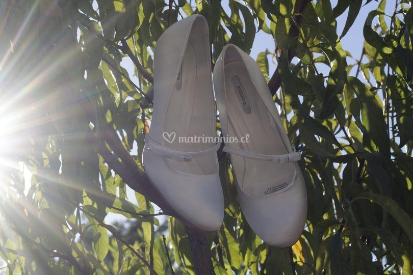 Zapatos de la ovia