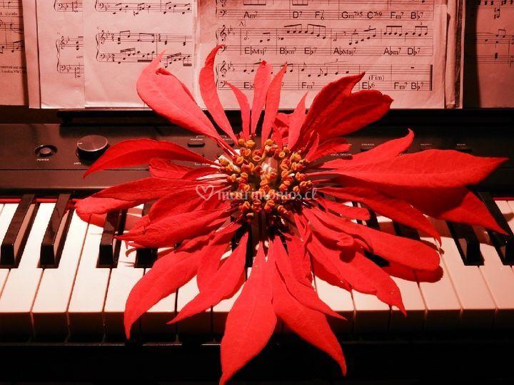 El piano del amor