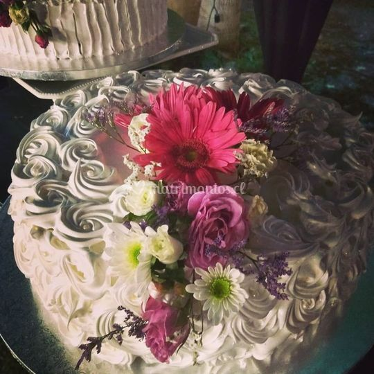 Matrimonio casona Las Delicias
