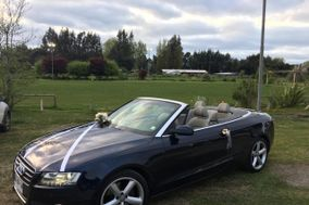 Audi Novios