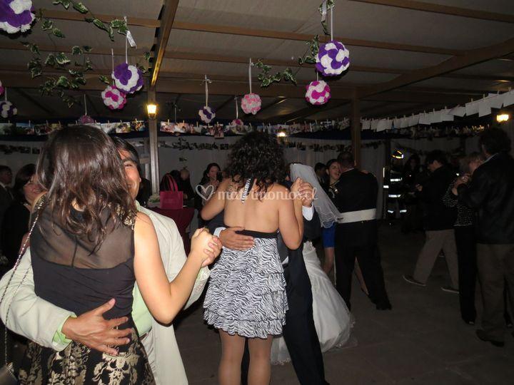 Sector baile