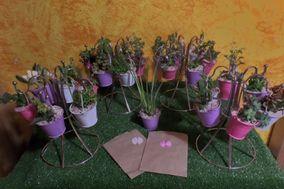 Tete Cactus y Suculentas