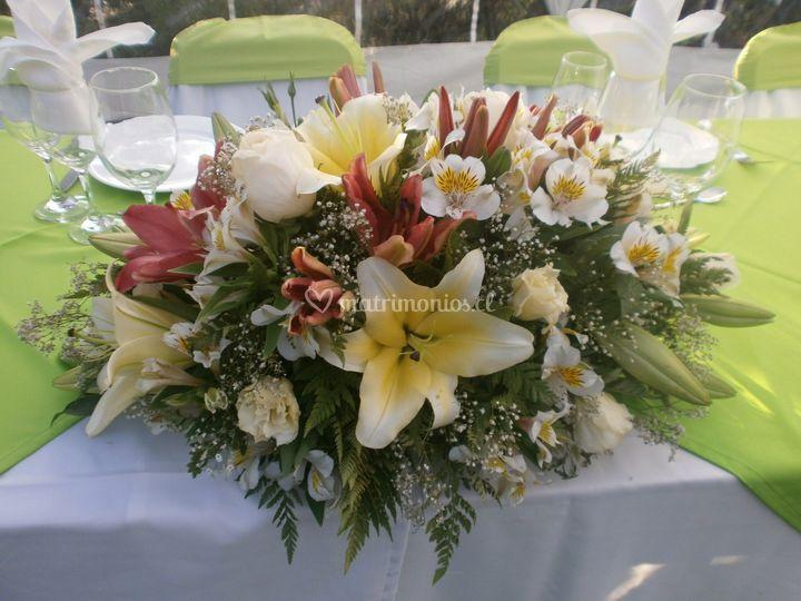 Flores Cabrera