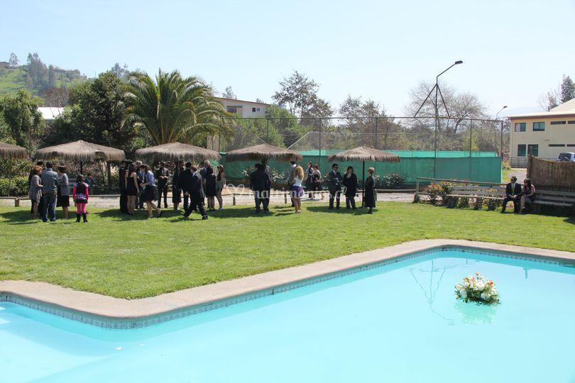 Sector piscina coctel