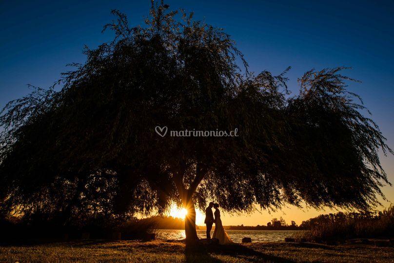Fotografo matrimonio concepción