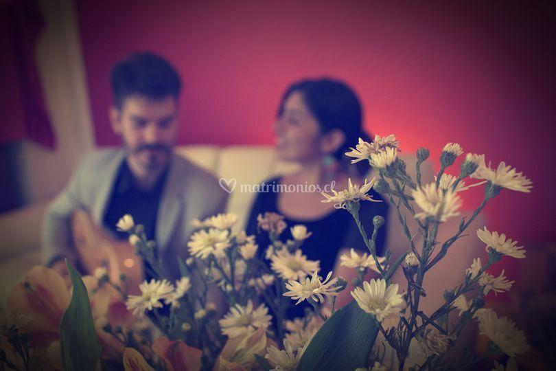 Foto misteriosa y flores