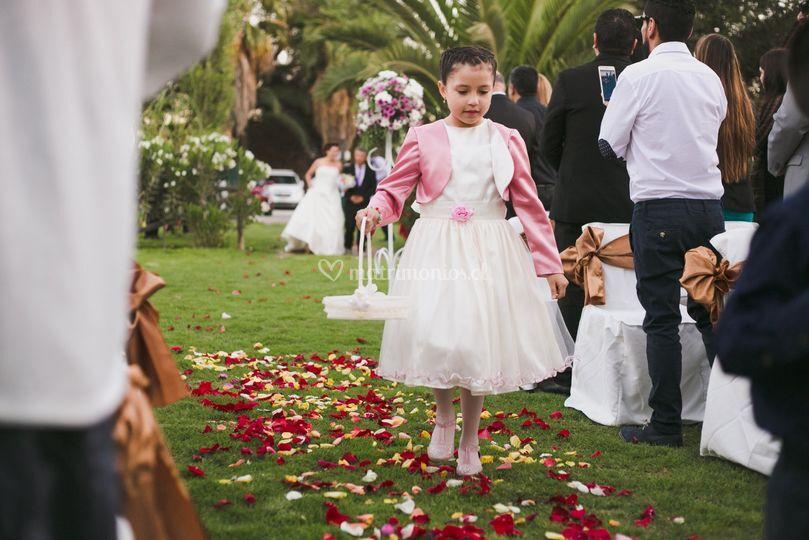 Matrimonio Miguel y Johanna
