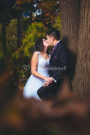 Matrimonio Olmué 2019