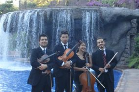 C & M Producciones Musicales - Coro