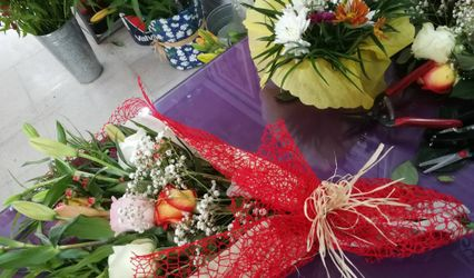 Florería Amatista 1