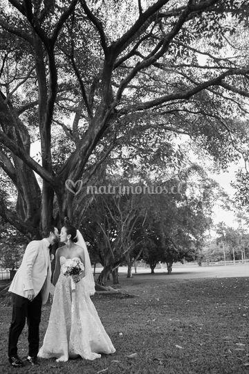 Matrimonio en Cali Colombia